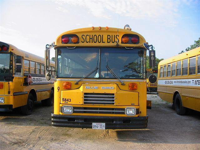 1991 BLUE BIRD TC2000 SCHOOL BUS - Winnie TX