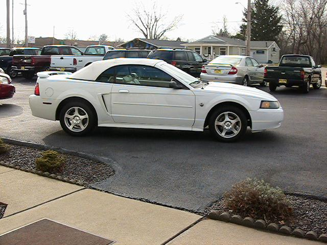 Image 15 of 2004 Ford Mustang Premium…