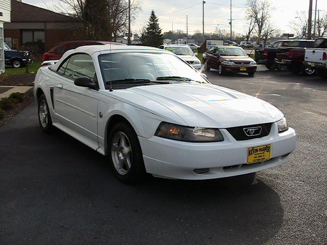 Image 16 of 2004 Ford Mustang Premium…