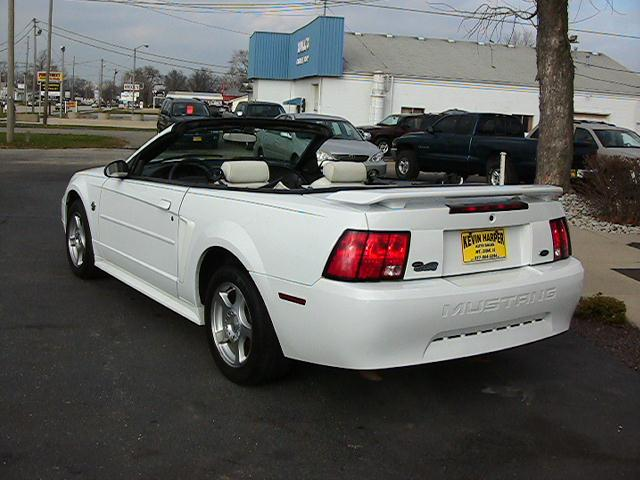 Image 20 of 2004 Ford Mustang Premium…